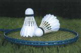 31 Marzo, Palermo (PA). Campionato Regionale FSSI di Badminton M/F